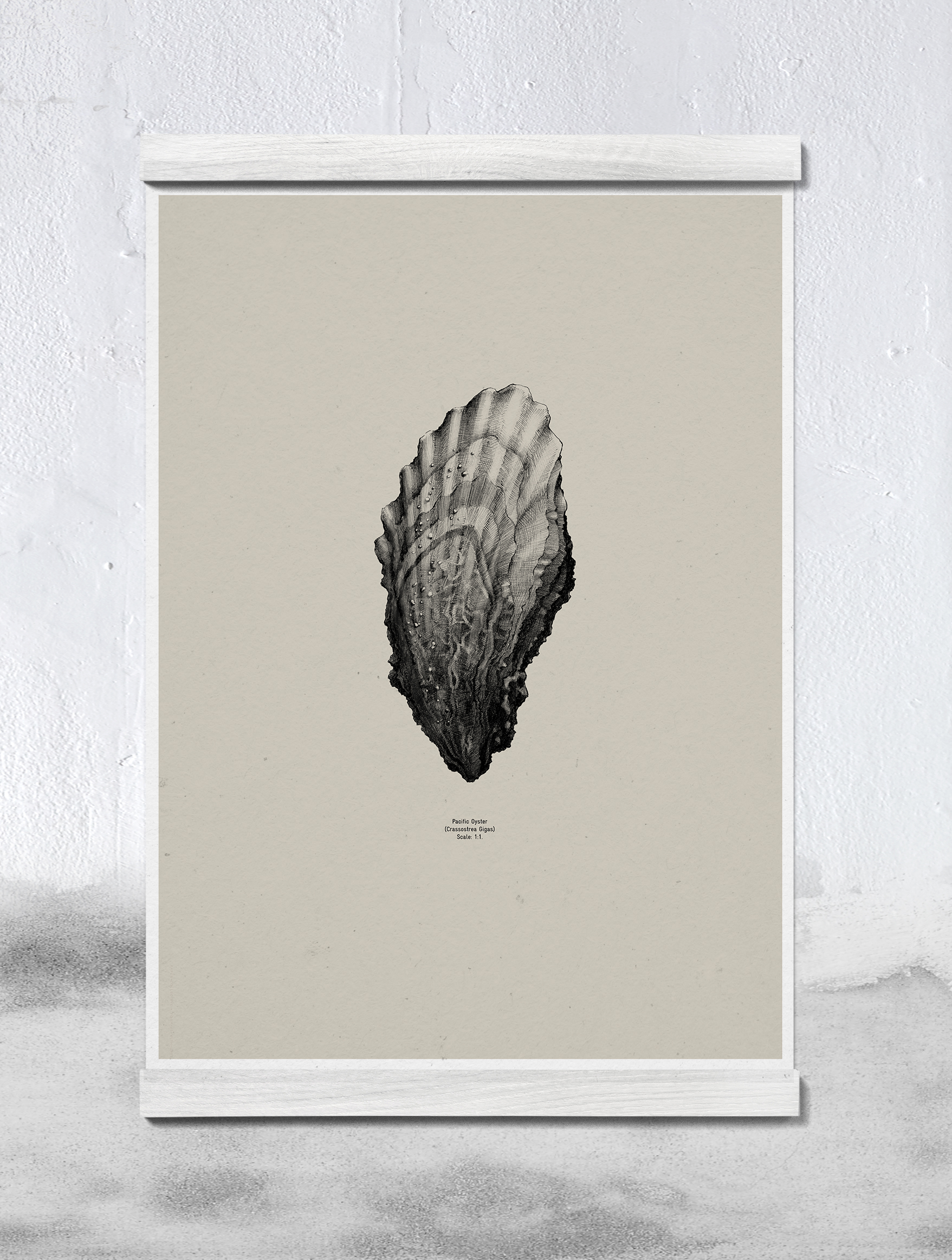 04013_Oyster_Sand